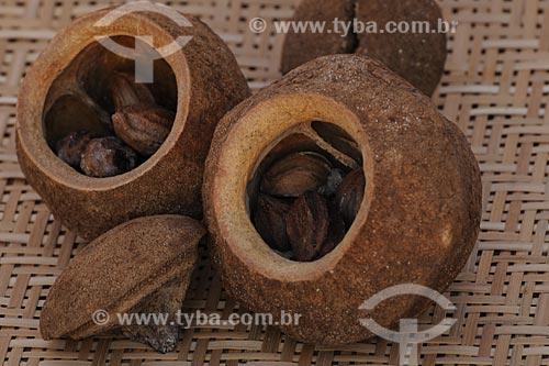 Assunto: Cesto com ouriço de Sapucaia / Local: Belém (PA) / Data: 13 de Outubro de 2008