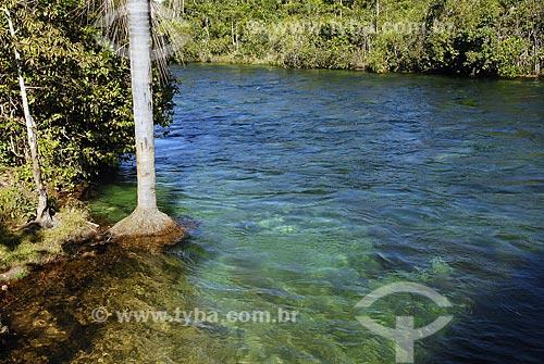 Assunto: Rio Verde / Local: Campo Novo dos Parecis (MT) / Data: 13 de Junho de 2007