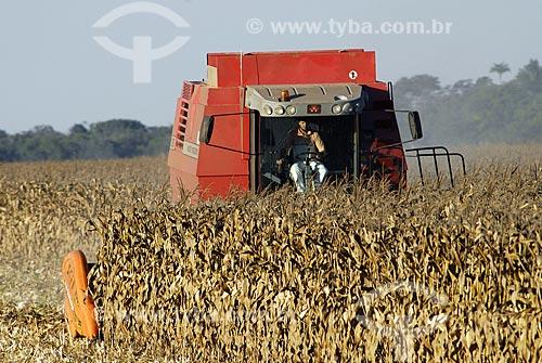Assunto: Colheita de Milho / Local: Sapezal (MT) / Data: 13 de Junho de 2007