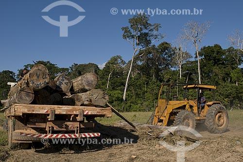 Assunto: Desmatamento na reserva extrativista Cachoeira, Manejo Florestal da madeira é autorizado / Location: Acre - Brasil / Data: 11 de Julho de 2008