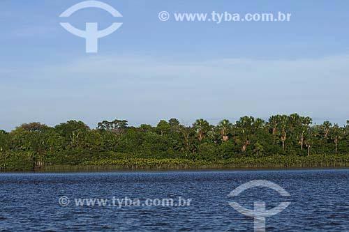 Assunto: Vista de rio e da floresta amazônica / Local: Pará / Data: 18 de Julho de 2008