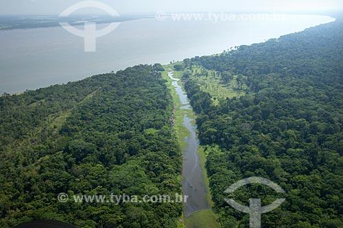 Assunto: Várzea no encontro dos rios Madeira e Amazonas, na margem direita do rio Amazonas / Local: Amazonas (AM) / Data: 29 de Outubro de 2007