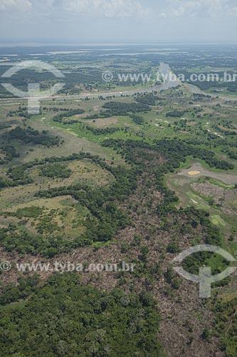 Assunto: Queimada em roças da várzea da margem direita do rio Amazonas, entre Manaus e Itacoatiara / Local: Amazonas (AM) / Data: 29 de Outubro de 2007