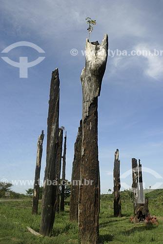 Assunto: Monumento aos mortos do massacre de Eldorado dos Carajás / Local: Pará (PA) - Brasil / Data: 2004
