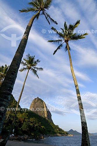 Assunto: Praia Vermelha com Pão de Açúcar ao fundo / Local: Rio de Janeiro - RJ - Brasil / Data: 2008