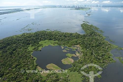 Assunto: Lago grande do Careiro da Várzea, Várzea do rio Amazonas, perto de Manaus / Local: Amazonas (AM) - Brasil / Data: Julho 2007