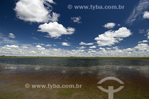 Assunto: Lagoa do Lavrado de Roraima / Local: Estrada de Boa Vista para Alto Alegre - Roraima - Brasil / Data: Janeiro de 2006