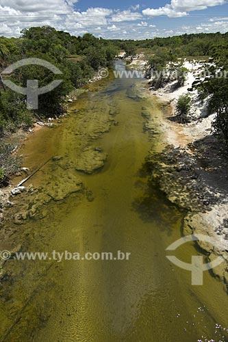 Assunto: Igarapé do Lavrado de Roraima / Local: Estrada Boa Vista-Alto Alegre - Roraima - Brasil / Data: Janeiro de 2006
