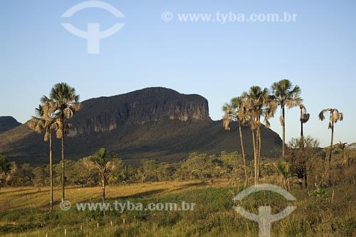 Assunto: Vista do Jardim de Maytrea - Parque Nacional da Chapada dos Veadeiros / Local: Goiás (GO) - Brasil / Data: Julho de 2007