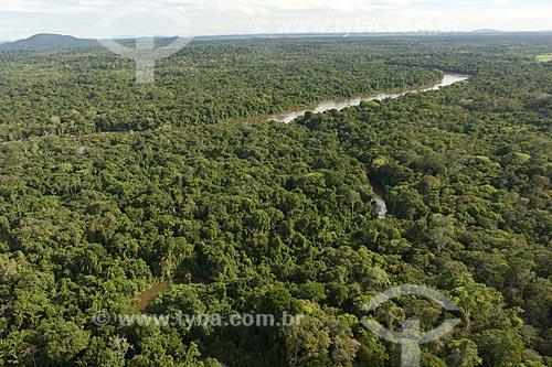 Assunto: Floresta amazônica na margem do rio Uraricoera, perto da ESEC Maracá (ilha de Maracá), a noroeste de Boa Vista / Local: Roraima (RR) - Brasil / Data: Janeiro de 2006