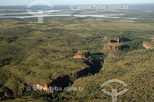 Assunto: Buritizais (Mauritia flexuosa) no sopé de chapadas perto da Represa do Lajeado / Local: Tocantins (TO) - Brasil / Data: Junho de 2006