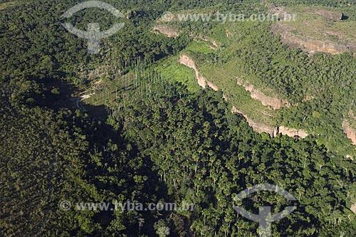 Assunto: Buritizal (Mauritia flexuosa) no sopé de chapadas perto da Represa do Lajeado / Local: Tocantins (TO) - Brasil / Data: 05/2007