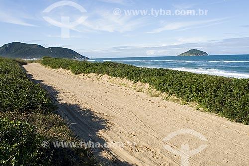Assunto: Estrada de terra na Praia do Moçambique / Local: Florianópolis - Santa Catarina (SC) - Brasil / Data: 03/05/2009