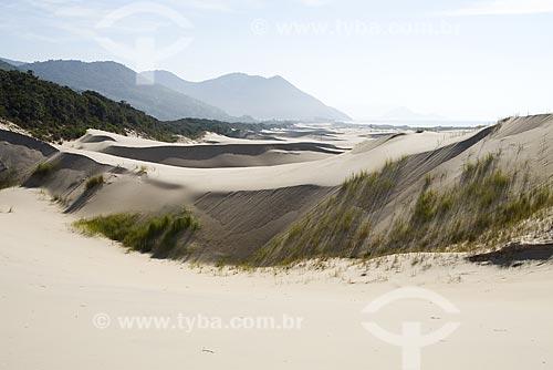 Assunto: Dunas da Praia do Siriú / Local: Garopaba - Santa Catarina (SC) - Brasil / Data: 24/05/2009