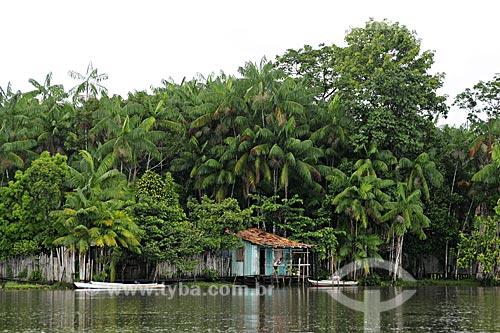 Assunto: Tipica casa ribeirinha no Rio Acara com acaizal em volta / Local: Acará - Pará - Brasil / Data: 02-04-2009