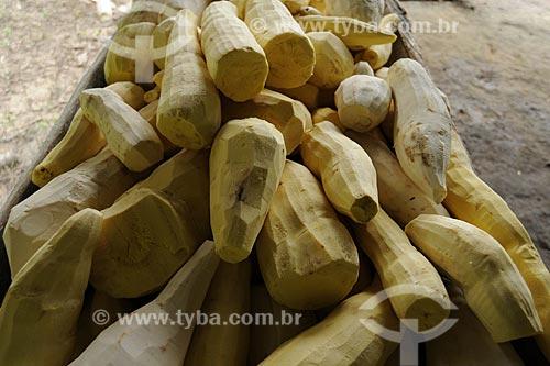 Assunto: Mandioca (Manihot esculenta) descascada para producao de farinha / Local: Territorio quilombola de Santa Maria do Traquateua - Moju - Pará - Brasil / Data: 02-04-2009