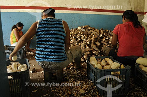Assunto: PAFAM - Programa de Agricultura Familiar - Mulheres descascando mandioca manualmente na Fabrica de Farinha