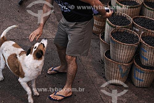 Assunto: Comércio de Açaí na Feira de Abaetetuba / Local: Abaetetuba - Pará - Brasil / Data: 04-04-2009