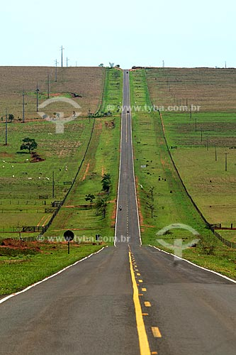Assunto: Rodovia BR-060 / Local: Camapuã - Mato Grosso do Sul (MS) / Data: Outubro de 2008