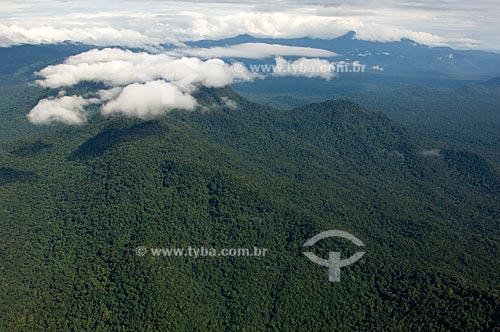 Assunto: Vista aérea do Parque Nacional da Serra da Mocidade - Floresta amazônica de terra-firme  / Local:  Sudoeste da cidade de Caracaraí - Roraima - Brasil  / Data: Janeiro de 2006