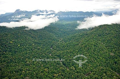 Assunto: Vista aérea de floresta amazônica de terra firme no Parque Nacional da Serra da Mocidade  / Local:  Sudoeste de Roraima - Brasil  / Data: Janeiro de 2006