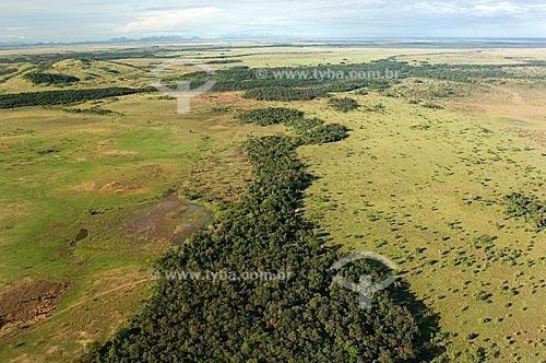 Assunto: Vista aérea de mata amazônica no Lavrado de Roraima  / Local:  Roraima - Brasil  / Data: Janeiro de 2006