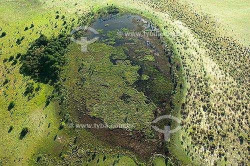 Assunto: Lagoa no Lavrado de Roraima  / Local:  Norte de Boa Vista - Roraima - Brasil  / Data: Janeiro de 2006