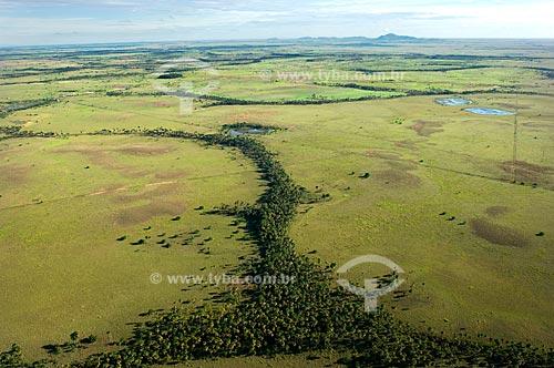 Assunto: Vista aérea de Mata de Galeria ao longo de igarapés do Lavrado de Roraima  / Local:  Norte de Boa Vista - Roraima - Brasil  / Data: Janeiro de 2006