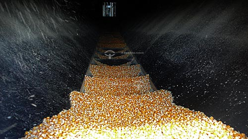 Assunto: Silos para secagem e armazenamento de graos de milho - Juparana Agricola  / Local:  Paragominas - Para - Brasil  / Data: 30/03/2009