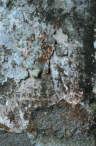Assunto: Textura das paredes do Hotel Paineiras (Parque Nacional da Tijuca) / Local: Rio de Janeiro - RJ / Data: Agosto de 2009