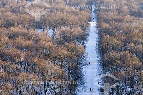 Assunto: Tiergarten visto do alto da Coluna da Vitória (Siegessäule)  / Local:  Berlim - Alemanha  / Data: 11/01/2009