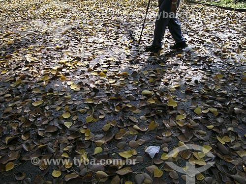 Assunto: Idoso caminhando no Parque do Catete  / Local:  Rio de Janeiro - RJ - Brasil  / Data:  2003