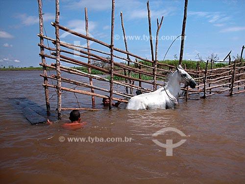 Assunto: Construção de curral dentro d`água, em paraná do rio Amazonas, no Campo Experimental do Baixo Amazonas da EMBRAPA  / Local:  Cacoal Grande, perto de Santarém - Pará (PA) - Brasil  / Data: 08/2003