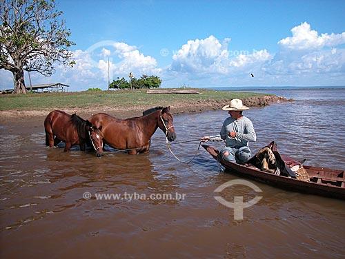 Assunto: Homem atravessando um paraná do rio Amazonas com cavalos, em Cacoal Grande, no Campo Experimental do Baixo Amazonas da EMBRAPA, perto de Santarém  / Local:  Pará (PA) - Brasil  / Data: 08/2003