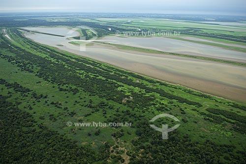 Assunto: Várzea da Ilha do Careiro, no rio Amazonas  / Local:  Entre Manaus e Itacoatiara - Amazonas (AM) - Brasil  / Data: 11/2007