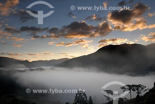 Assunto: Nascer do sol com neblina na Serra da Mantiqueira  / Local:  Fragaria - MG - Brasil  / Data: 05/2009