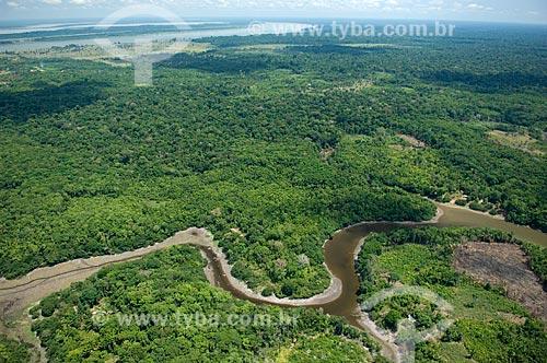 Assunto: Floresta amazônica a leste de Nova Olinda do Norte  / Local:  Amazonas (AM) - Brasil  / Data: 11/2007