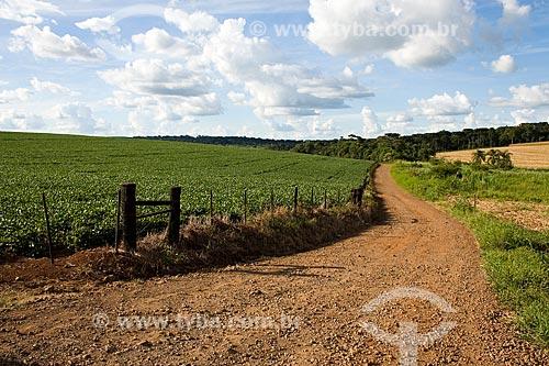 Assunto: Estrada de terra em uma paisagem rural / Local: Guatambu - Santa Catarina - Brasil / Data: 02/2010
