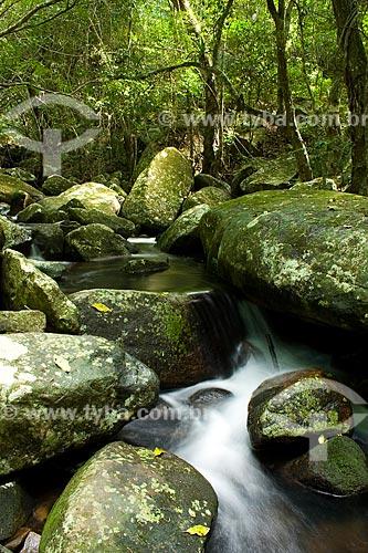 Assunto: Rio das Pacas, próximo à Praia da Solidão / Local: Florianópolis - Santa Catarina - Brasil / Data: 04/2010
