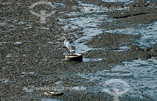 Assunto: Garça no Canal do Cunha na Baía de Guanabara  / Local:  Complexo da Maré - Rio de Janeiro - RJ - Brasil  / Data: 05/2007