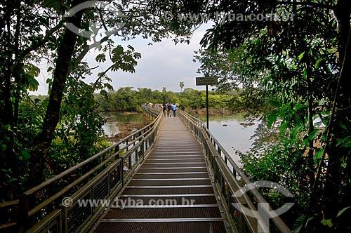 Assunto: Passarela no Parque Nacional Iguaçu - o parque foi declarado Patrimônio Natural da Humanidade pela UNESCO   / Local: Argentina  / Data: 09/06/2009