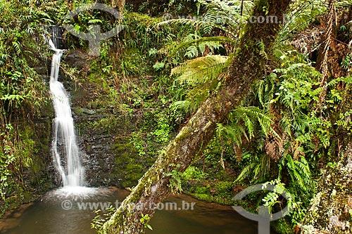 Assunto: Cachoeira no Rio Bonito / Local: Urubici - Santa Catarina (SC) - Brasil / Data: 17/07/2010