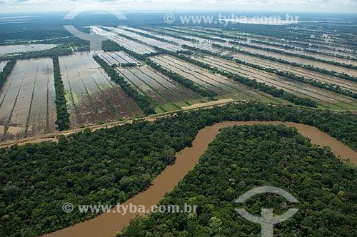 Assunto: Plantação de soja inundada por um afluente do rio Mamoré, durante a grande enchente de verão  / Local:  Planície de Beni -  Departamento de Beni - Bolívia  / Data: 03/2008