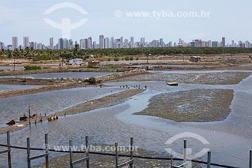 Assunto: Tanques para criação de camarão em cativeiro na Ilha de Deus   / Local:  Recife - Pernambuco  / Data: 14/10/2010