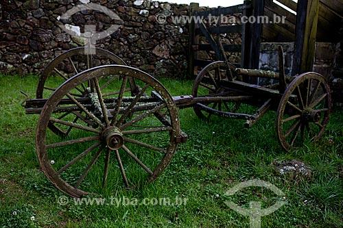 Assunto: Carcaça de carro de boi  / Local:  Campos de Cima da Serra - Rio Grande do Sul  / Data: 09 /2010