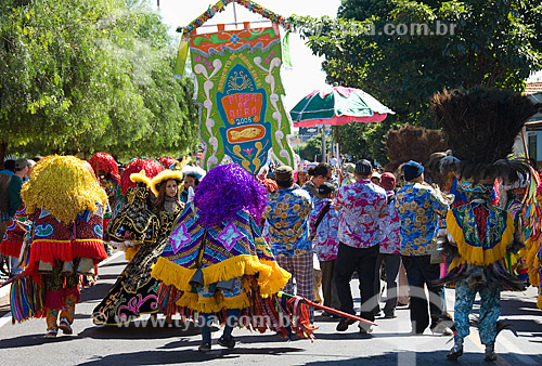 Assunto: Sociedade Folclórica Bumba Boi de Morros de São Luis no Festival de Folclore de Olímpia  / Local:  Olímpia - São Paulo - SP  / Data: 08/2008