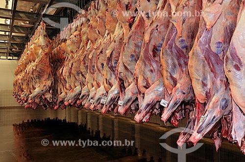 Assunto: Frigorífico / Local:  Campo Grande - Mato Grosso do Sul - MS  / Data: 12/2008
