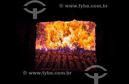 Assunto: Queima de sabugo de milho para aquecimento de caldeira  / Local:  Uberlândia - Minas Gerais - MG  / Data: 12/2008