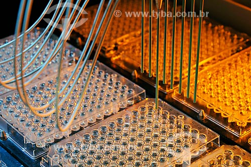 Assunto: Laboratório de pesquisa de pureza genética de semente de soja geneticamente modificada  / Local:  Uberlândia - Minas Gerais - MG  / Data: 12/2008
