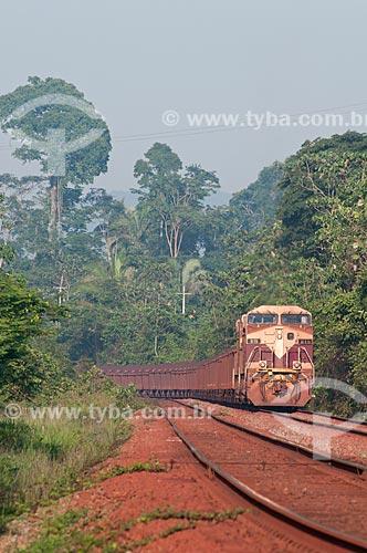 Assunto: Trem carregado de minério da companhia Vale - estrada de ferro Carajás -  em paisagem típica da Área de Proteção Ambiental (APA) do Igarapé do Gelado  / Local:  próximo à cidade de Parauapebas - Pará  - Brasil  / Data: 10/2010